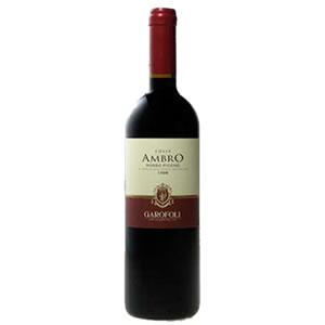 Rosso Piceno Colle Ambro - Garafoli
